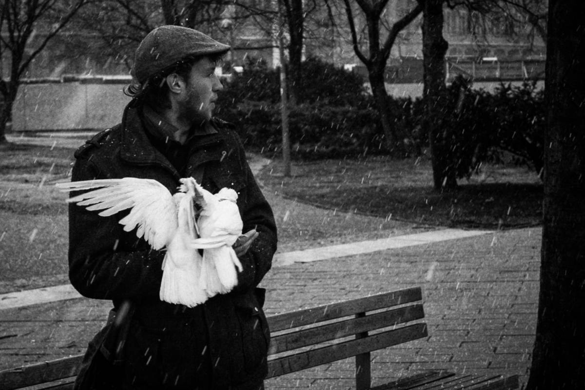Doves - Berlin.jpg