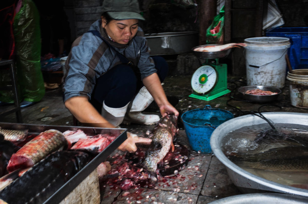 Street Photography Hanoi - Fish