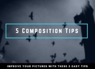5 Composition Tips