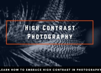 High Contrast Photography