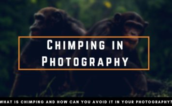 Chimping in Photography