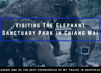 Elephant Jungle Sanctuary Cover Photo