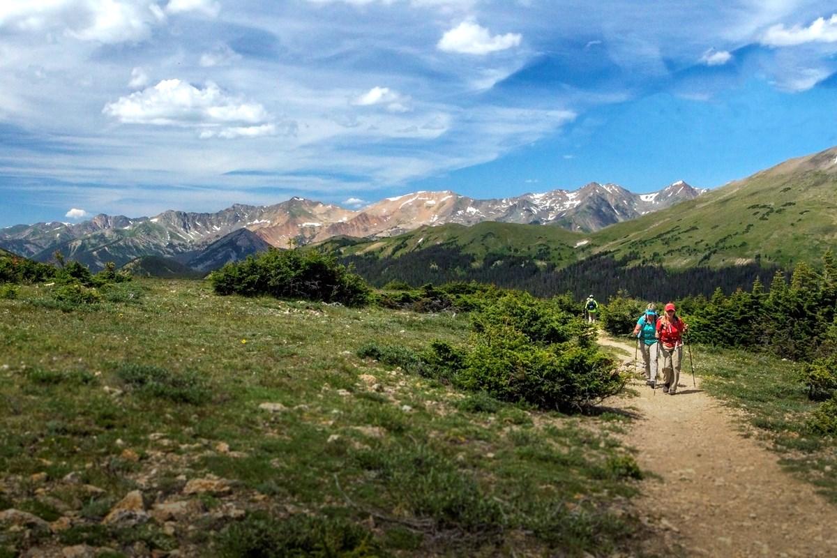 Hiking Shoes - Hiking