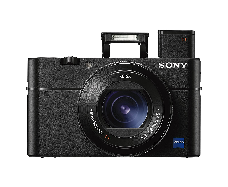 SONY RX-100 - Travel Camera under $500