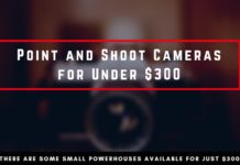 Best Point and Shoot Cameras for Under $300