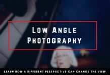Low Angle Photography