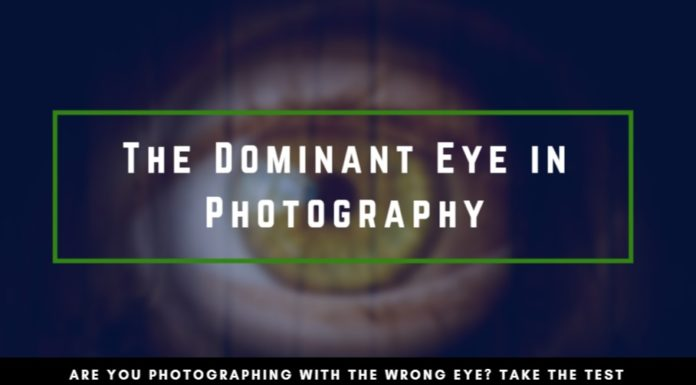 The Dominant Eye